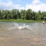 IMG 0318 150x150 - Куда пойти купаться?