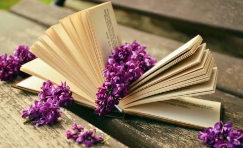 3 книга - Какую книгу вы перечитываете с удовольствием?