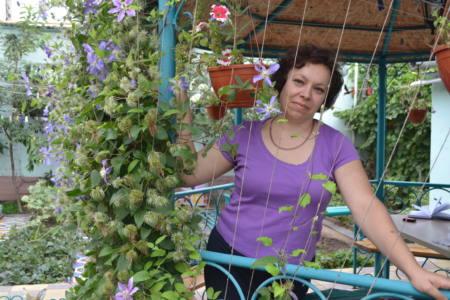 1 фотка - Цветочная радуга Марины Маринич