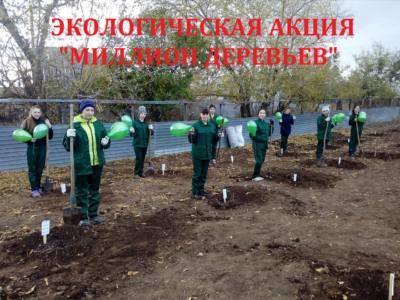 17 подв 3 - Озеленяют планету дети