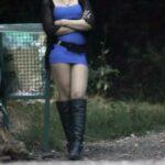 6 глав 150x150 - Проституция в режиме онлайн