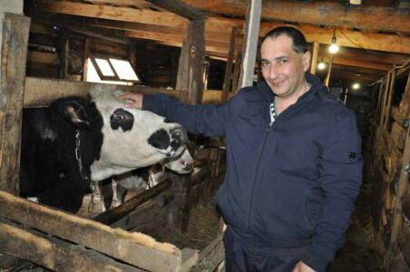 8 глав - За сбыт молока отвечают фермеры