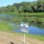 2 глав 1 150x150 - Река превращается в болото
