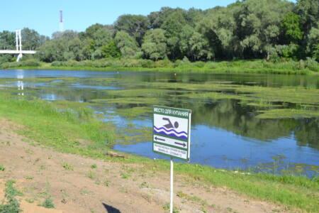 2 глав 1 - Река превращается в болото