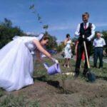 8 п 1 150x150 - Вместо свадебного замка - дерево