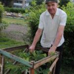 IMG 3724 150x150 - Аллея каштанов пенсионера Филиппова