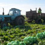 5 г 1 150x150 - Прописка помешала фермерам развиваться